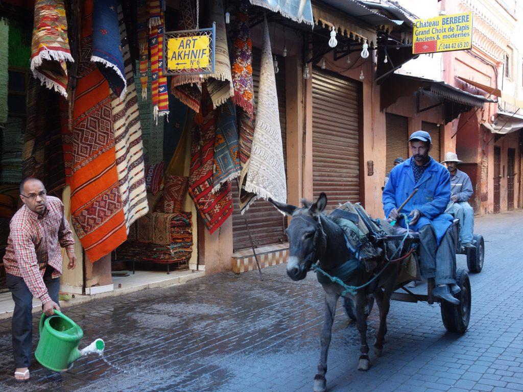Keledai adalah hewan pengangkut utama di Maroko.
