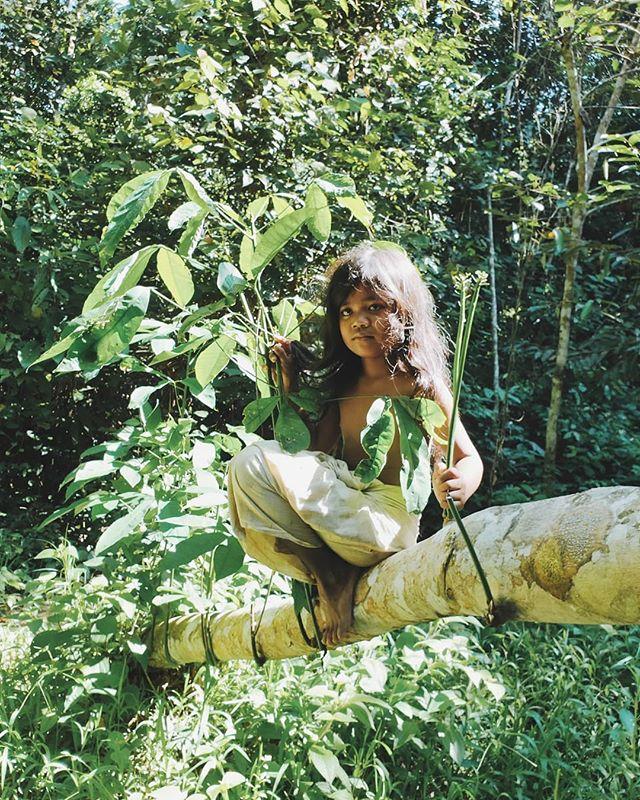Nande, salah satu anak dari suku Orang Rimba di Taman Nasional Bukit Dua Belas, Jambi. Bagaimana orang Rimba menjalani hidup ketika rimba sudah semakin mengecil, bahkan kelak tak ada?